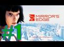 прохождение Mirror's Edge 1 проведем обучение прыжков и др с целестой