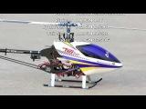 Alan Szabo Jr. Align Trex 450 Sport Flybarless 4/1/2011