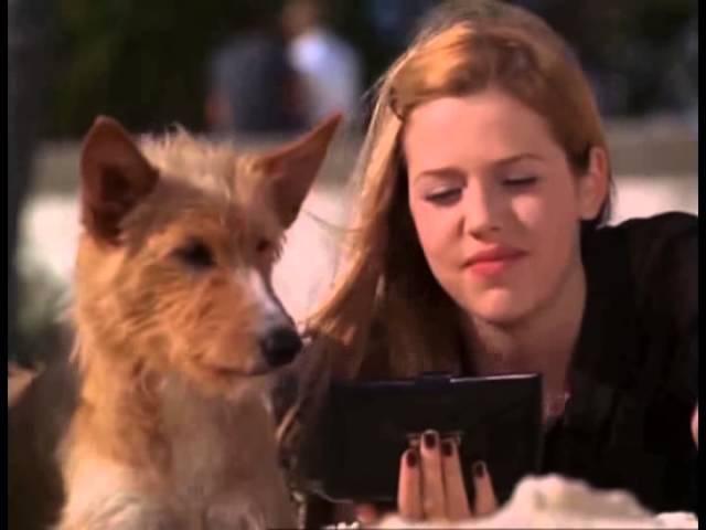 Zeus and Roxanne - Friendship and Love (Зевс и Роксана - Дружба и любовь)