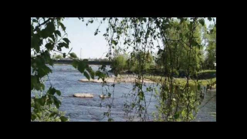 Владимир Засухин Берега берега