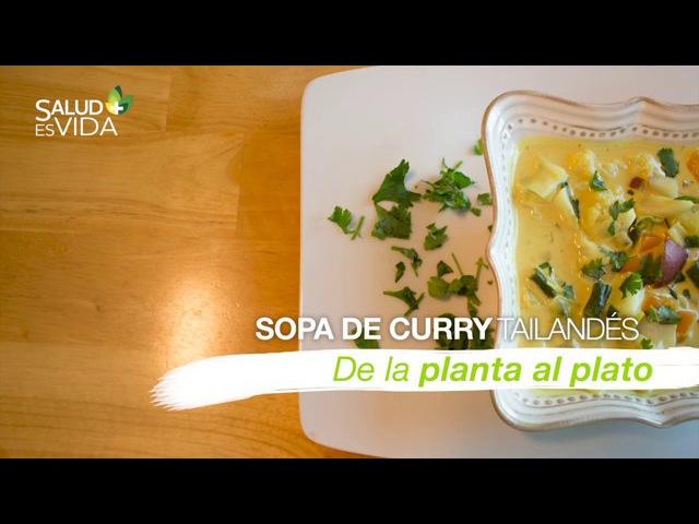 Sopa de curry tailandés