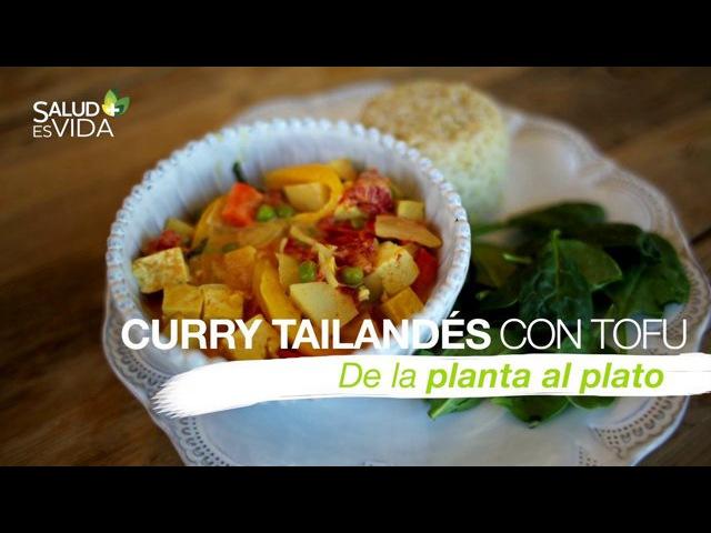 Curry tailandés cremoso con tofu