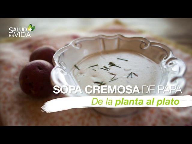 Sopa cremosa de papa