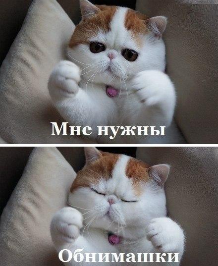 Фото №361849586 со страницы Елены Ивановой