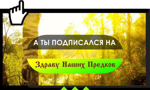 Здрава Наших Предков - сообщество, в котором много информации, которая нужна тебе: начиная от оздоровительных рецептов наших предков, заканчивая возрождением традиционных славянских обычаев. ⚡🔥