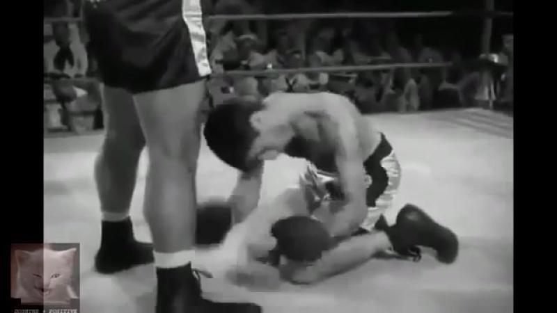 TWFE - Танцор на ринге