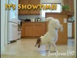 Джесс расправляется с грабителем - готовая сцена из фильма!