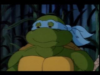 Черепашки ниндзя (Teenage Mutant Ninja Turtles) - Неопознанный летающий Леонардо (4 Сезон, 39 Серия)