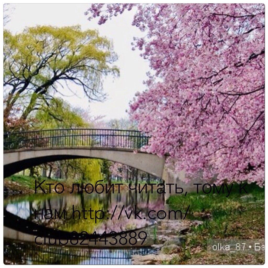 Японский сад москва 9 фотография