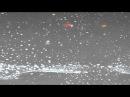 Осенний дождь льётся на серый асфальт Видео футаж Full HD 1080p