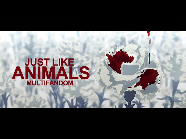 Just like animals multifandom amv