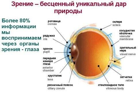 Эфффективные упражнения для улучшения зрения Глаза работают благодаря мускулам, а мускулы надо тренировать, — рассказывает врач-офтальмолог – Движения глазами лучше делать утром или вечером, перед сном. Каждое упражнение повторяйте по 5-30 раз, начинайте с малого, постепенно увеличивайте нагрузку. Движения плавные, без рывков, между упражнениями полезно поморгать. И не забудьте снять очки или контактные линзы. Упражнение № 1. СМОТРИМ В ОКНО Делаем точку из пластилина и лепим на стекло.…