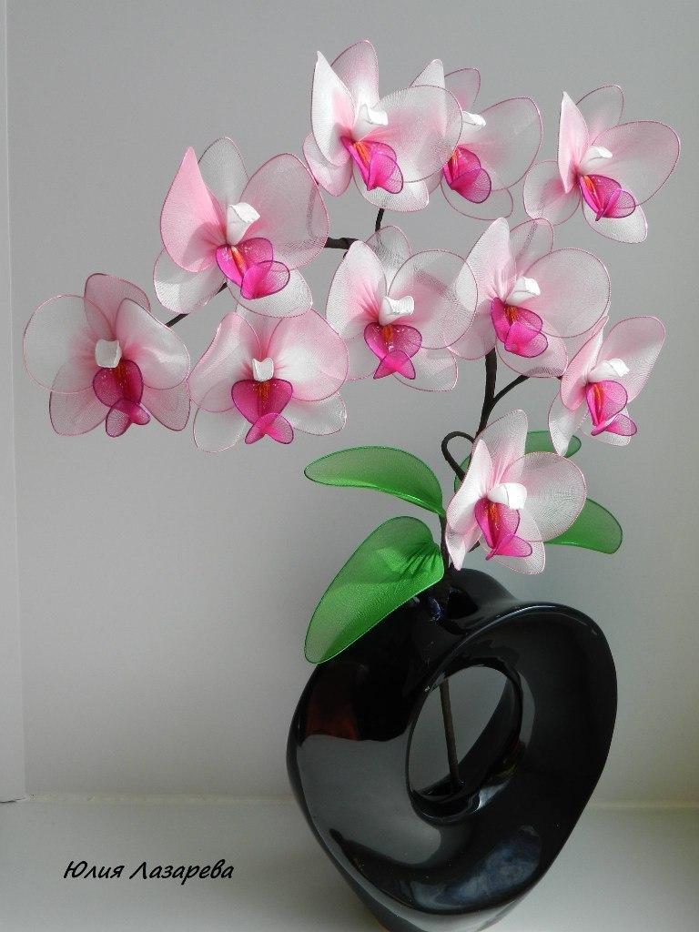 Как сделать орхидею из капрона видео - Njkmznnb.ru