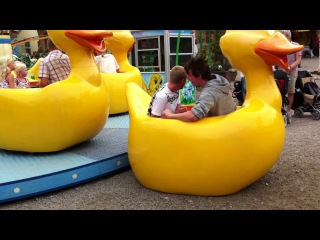 Roller Coaster Accident Crazy Duck
