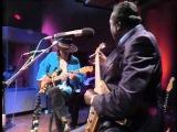 Albert King &amp Stevie Ray Vaughan In Session 2010 1983