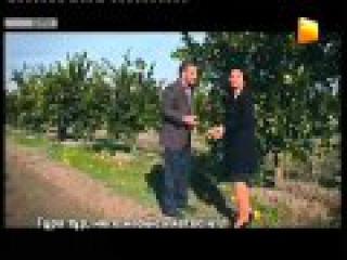 Дила Госпожа Дила Dila Hanim 34 35 серия озвучка 31 канал 360p