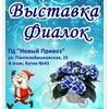 """Одесский Клуб любителей сенполий """"Фиалковый мир"""""""