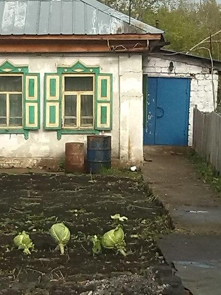 Город Мастеров, Недвижимость, Кемерово, Дом за вокзалом