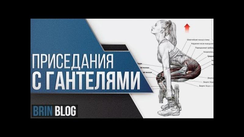 Приседания с гантелями / Техника выполнения / Ярослав Брин / Squats with dumbbells / Как приседать