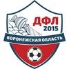 Детская Футбольная Лига Воронежской Области