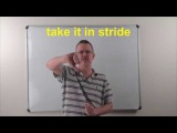 Learn English Daily Easy English Expression 0787 to take it in stride