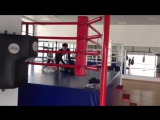 Тренировка ( г. Краснодар X Fit )
