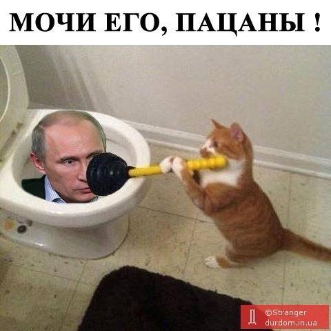 Страны Большой семерки не согласны с Россией по вопросу Крыма, - представитель правительства Германии - Цензор.НЕТ 8445