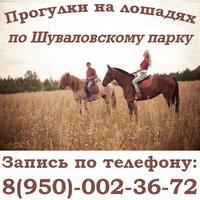 Конный клуб - конные прогулки на лошадях в СПб