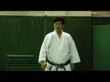 Сиро Асано. Школы и мастера. Сётокан каратэ. Боевые искусства мира.