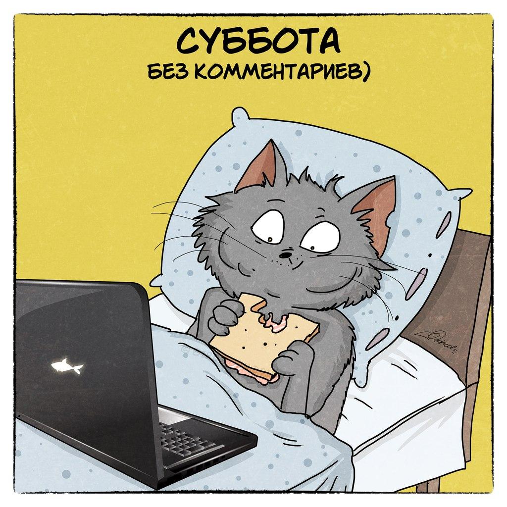 http://cs624224.vk.me/v624224667/2f8d1/xRK8bR-BD_0.jpg