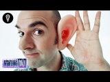Что скрывает человеческое ухо. Потенциал о котором мы не подозреваем Тайны тела
