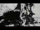 """Neurosis- """"Lost"""" Music Video (Scenes from Begotten)"""