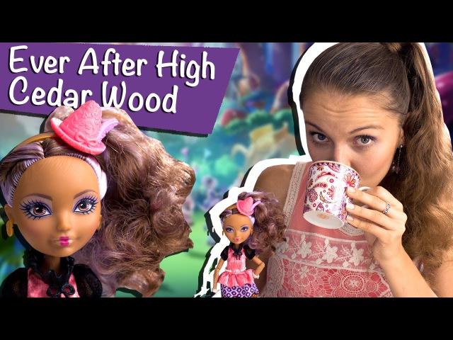 Cedar Wood Hat-Tastic Party (Сидар Вуд Чайная вечеринка) Ever After High Обзор/Review, BJH32