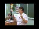 Шишова ОИ Анионовые прокладки для здоровья женщин
