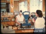 Камышин в хронике №23 Некрасова 4 школа мясо молоцный магазин