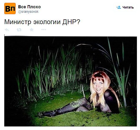 Из-за боев на Донбассе разрушены пять природных заповедников: существует реальная угроза экологической катастрофы, - экологи - Цензор.НЕТ 5681