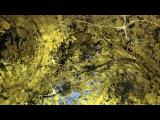 Mind Illuminated - Greg Dunn M