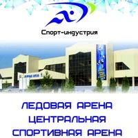 Логотип Ледовая Арена. Центральная спортивная арена.