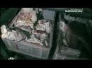Жесть. Из чего делают мясо и колбасу, которые мы едим. Ч2