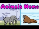 Animals and Their Homes - Fun Learning Game for Kids, Educational Activities for Children