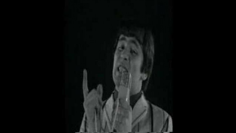 Troggs With A Girl Like You