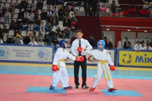 Афиша Улан-Удэ Отборочный турнир по тхэквондо (ИТФ)
