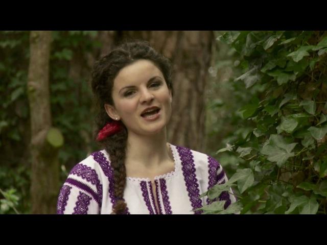 Mihaela Cipriana Balasca - La pamant frumos rasuna