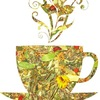 Травяные и фруктовые чаи и сборы. Иван чай