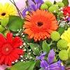 Купить цветы со скидкой и доставкой