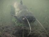 Диалоги о рыбалке. Река Кама