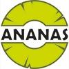 Развлекательный центр АНАНАС
