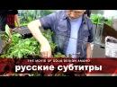 ADAview THE MOVIE OF AQUA DESIGN AMANO side layout русские субтитры