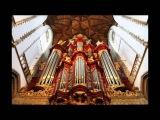 JS Bach on 1738 Mueller Organ in St Bavo Church at Haarlem