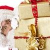 Добрые подарки Деда Мороза г.Салават